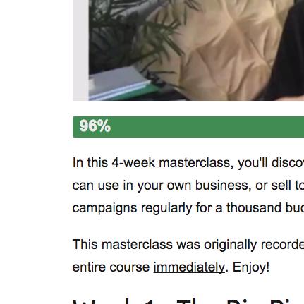 McIntyre Method – Email Copywriting Masterclass 02 progress bar